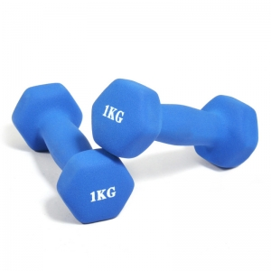 China Fitness Colored Neoprene Dumbbells Pairs Supplier