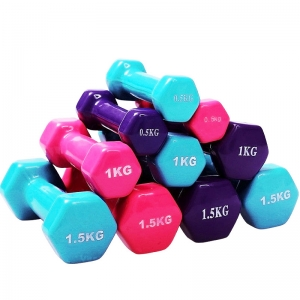 China Fitness Ladies and Kids Aerobic Dumbbell Wholesaler