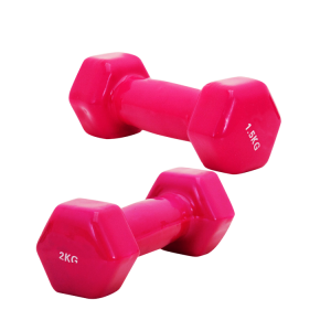 Colours Plastic Hexagonal Dumbbell For Sale