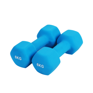 Gym neoprene dumbbell body building vinyl hand weights in pound China supplier