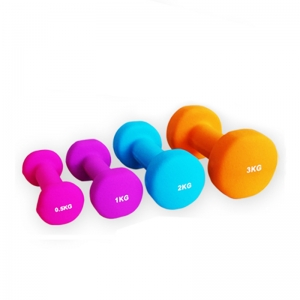 China Ladies Fitness Aerobic dumbbell Set Manufacture