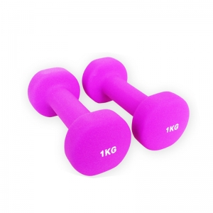 China Ladies Neoprene Dumbbell Sets Supplier