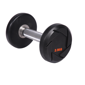 China China Manufacturer Weight Lifting Fitness Round CPU Dumbbell factory