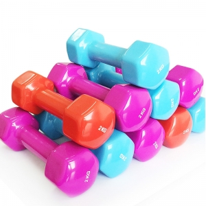 China China hot sale 2020 new custom portable hex vinyl dumbbell factory