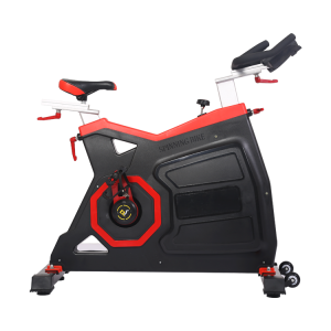 Chinese professional factory commercial body fit gym master fitness spinning bike schwin spin bike