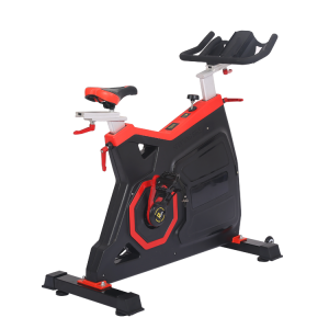 China Chinese professional factory commercial body fit gym master fitness spinning bike schwin spin bike factory