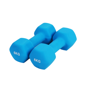 Chine Gym neoprene dumbbell body building vinyl hand weights in pound China supplier usine