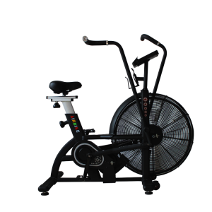 Indoor Fan Bike for Cardio Gym Fitness