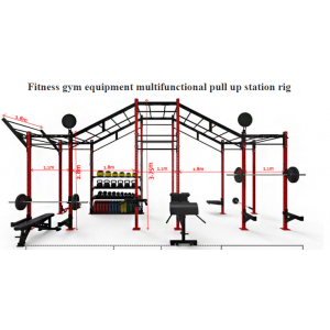 China New Fitness Equipment Multifunctional Pull Up Station Rig factory